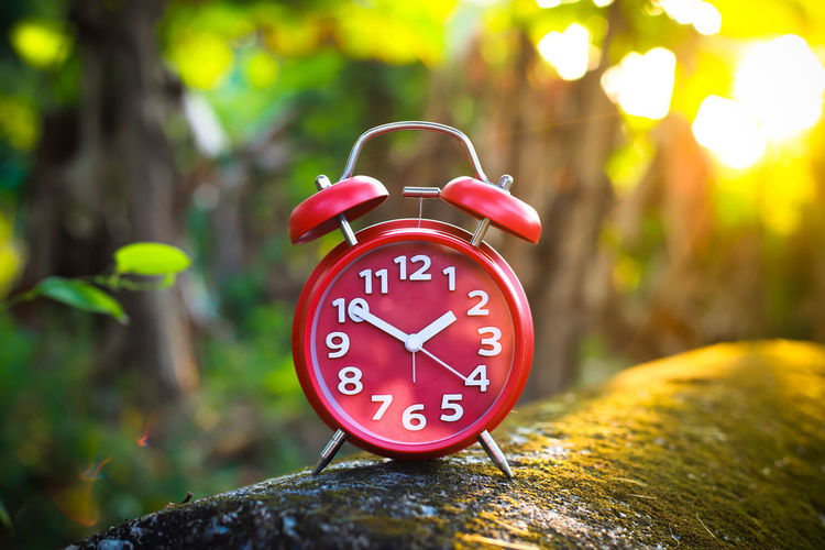 Red Alarm Clock Alarm Clock Clock Time Number Focus On Foreground Clock Face Minute Hand No People Tree Close-up Red Communication Circle Shape Geometric Shape Plant Day Hour Hand Clock Hand Accuracy Outdoors Red Alarm Clock Clockworks