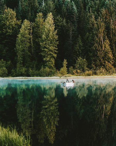 Best friend. Long Goodbye Tree Nature Forest Water Lake Beauty In Nature Nautical Vessel Tranquility Scenics Tranquil Scene Reflection Lush Foliage Day Transportation Mode Of Transport Growth Outdoors Plant No People Leaf TCPM Connected By Travel