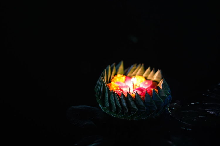 """Loy Kratong Festival"" in thailand 22 November 2018 Camera : Sony A7 miii Lens : 85 mm f1.4 GM Loy Kratong Festival Dark Festival Tree Black Background Background Bouyant Floating On Water Full Moon Night  Goddess Of River"
