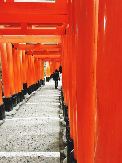 Rear view of woman walking in fushimi inari shrine