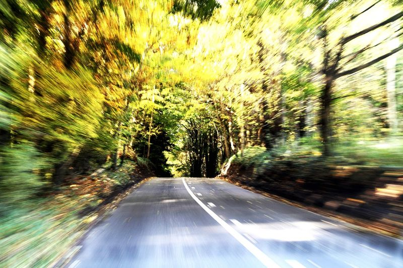 Warpspeed Speed Nature Trees Road Fast Photography In Motion Showing Imperfection