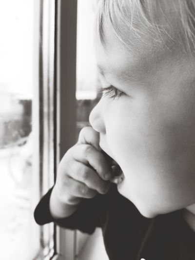 Close-up portrait of boy looking through window