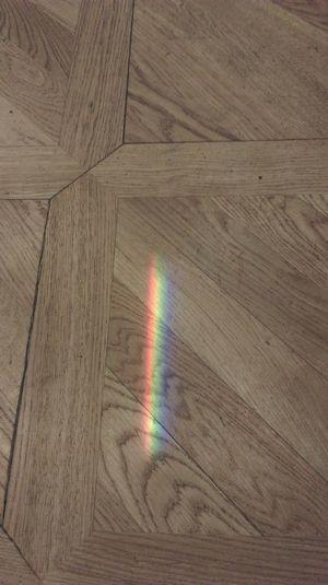 Enjoying Life Rainbow Enjoying The Sun From My Point Of View the rainbow on my flor