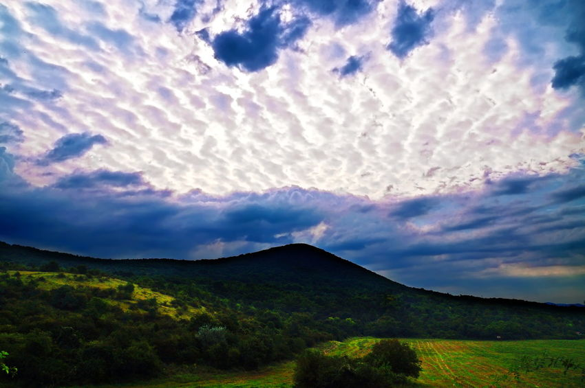 Cloudy daybreak Cloudy Daybreak Beauty In Nature Cloud - Sky Clouds And Sky Dawn Day Early Morning Grass Landscape Nature No People Outdoors Pilis Pilisszántó Scenics Sky Tranquil Scene Tranquility Tree