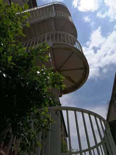 Low Angle View Tree Sky Outdoors Architecture Day Built Structure No People Water Conservation Staircase University Of The Witwatersrand Johannesburg Retro Hipster Style Theme Leaves Natural Nature Nature And Modern Mix