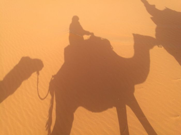my first camel ride at Sahara desert Soonjourney MyWanderLust Natural Journey Art Africa Morocco Goodday Relaxing Desert Sahara Sand Dune Desert Shadow Sand Silhouette Sunset Sunlight Riding Sky Working Animal Focus On Shadow Camel Long Shadow - Shadow