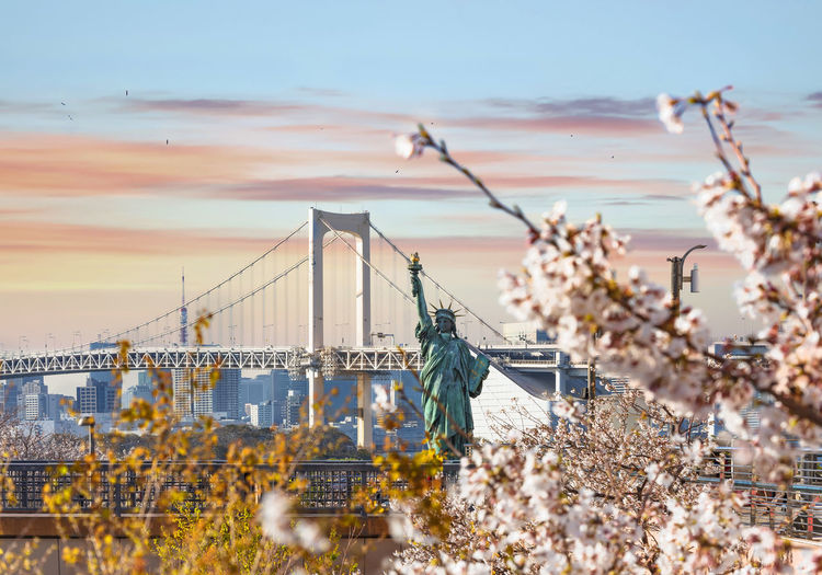 Replica of the french statue of liberty with cherry blossoms in the odaiba seaside park.