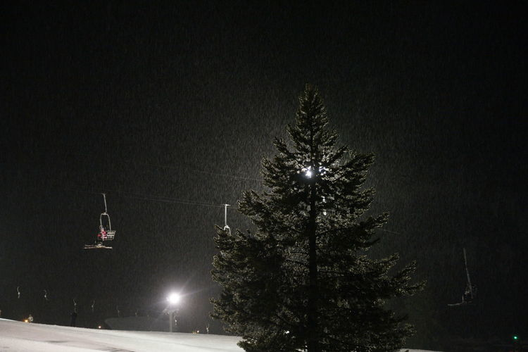 Bad Weather Beauty In Nature Chairlift Chairlifts Copy Space Downpour Glowing Glowing In The Dark Illuminated Light - Natural Phenomenon Lighting Equipment Night Outdoors Rain Rainy Days Rainy Night Storm Stormy Terrible Weather Tree Weather Snow Sports