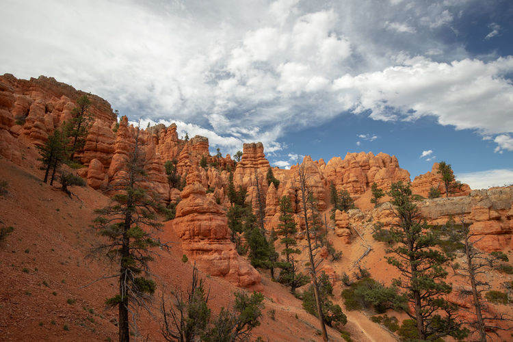 Red Canyon in Utah, USA - the smaller brother of the world famous Bryce Canyon Non-urban Scene Beauty In Nature Scenics - Nature Nature Tranquil Scene Tranquility Red Canyon Red Canyon State Park, Utah USA National Park Rock Rock Formation Plant Rock - Object Environment Travel Landscape Mountain Idyllic Physical Geography Outdoors Formation Climate Eroded Arid Climate