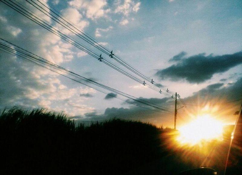 Flying High Like A Bird Fly Like A Bird Sky Full Of Colors