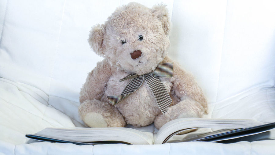 Teddy Bear With Book On Bed