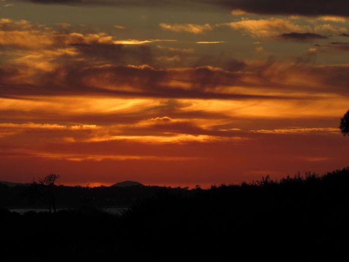 Sunrise 6:35am Sunrise Sky Beauty In Nature Scenics - Nature Cloud - Sky Silhouette Tranquil Scene Tranquility Orange Color Tree Plant Idyllic No People Nature Dramatic Sky Environment Non-urban Scene Majestic Landscape Awe