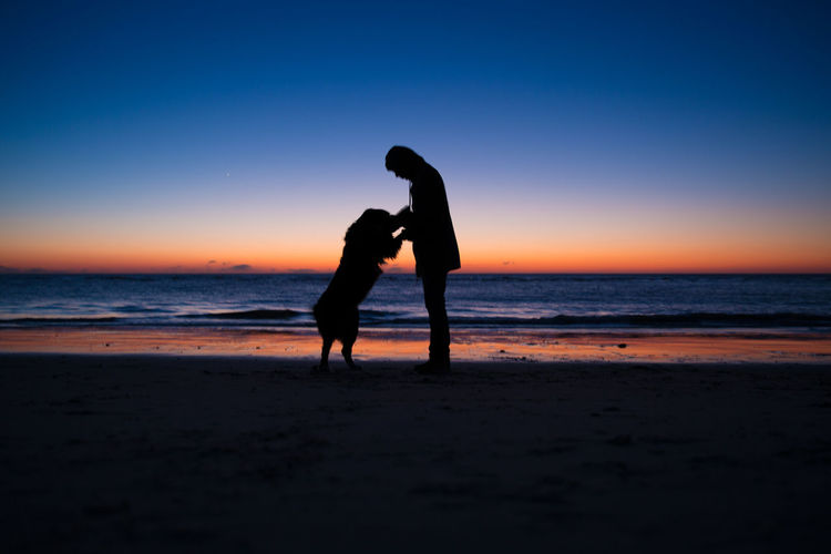 Silhouette man with dog at beach against sky during sunset