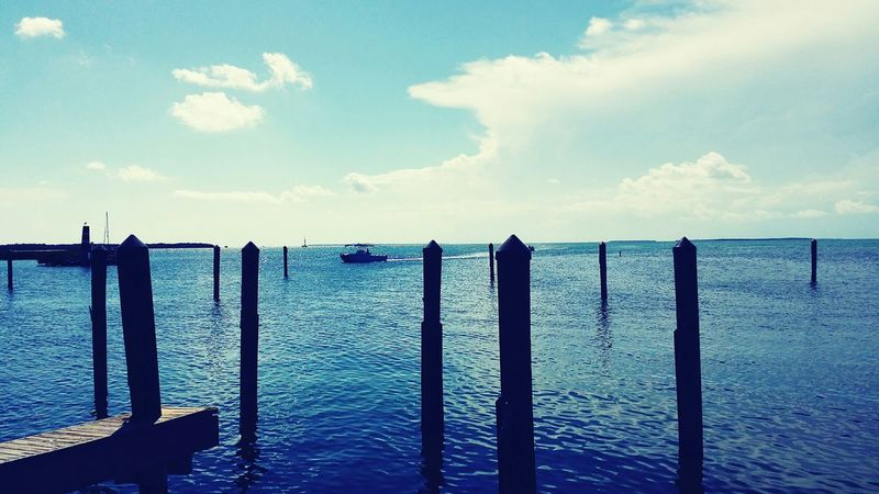 Share Your Adventure Florida Keys Boating Nature On Your Doorstep