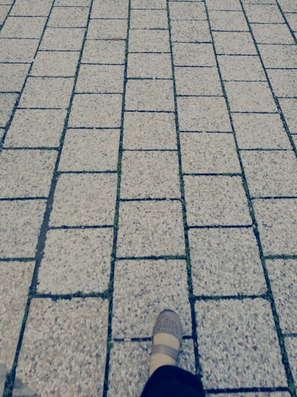 low section, shoe, human leg, standing, one person, high angle view, pattern, day, real people, outdoors, stone tile, human body part, close-up, nature, people