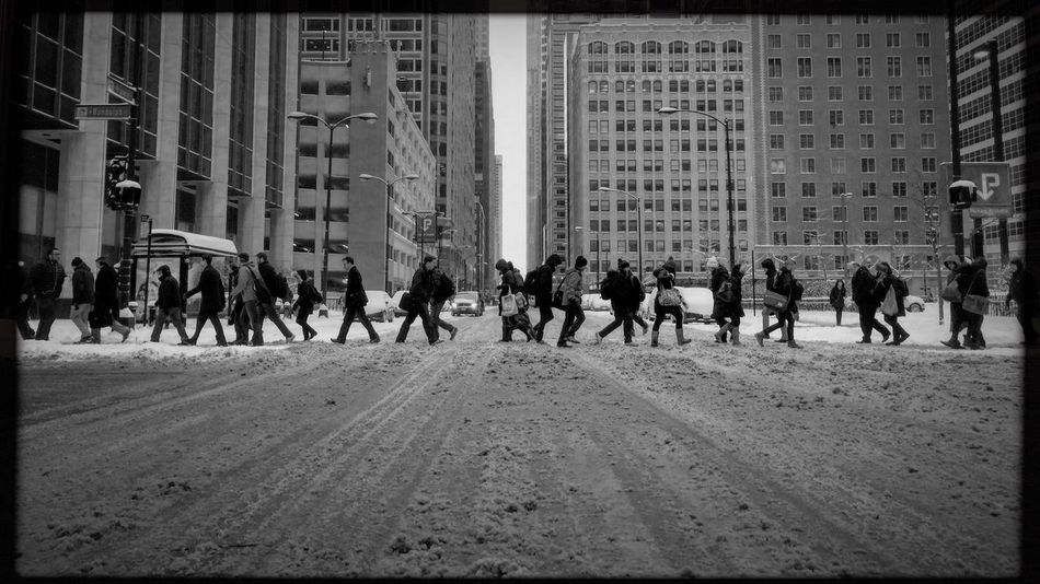 Walk of life. Franklin and Randolph Streets, Chicago. Building Exterior Large Group Of People Architecture Real People Built Structure City City Life Men Outdoors Day Women Mixed Age Range Skyscraper Adults Only People Adult Hipstamatic Shootermag Blackandwhite My Commute Streetphotography Streetphoto_bw Photojournalism The Street Photographer The Street Photographer - 2017 EyeEm Awards Mobility In Mega Cities