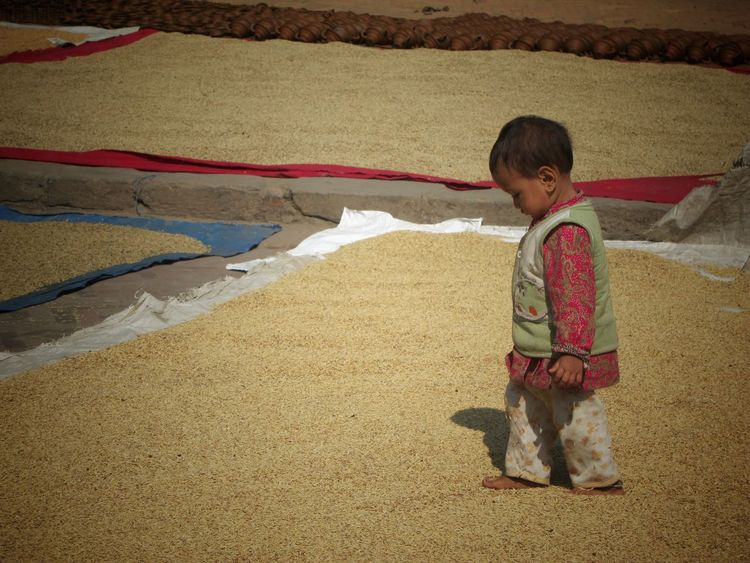 Child walking on Rice Grains in Bhaktapur Nepal Courtyard  Culture Heritage Toddler  Child Newari Kathmandu Tradition UNESCO World Heritage Site Rural Scenes Travel Up Close Street Photography Agriculture People And Places Miles Away Investing In Quality Of Life