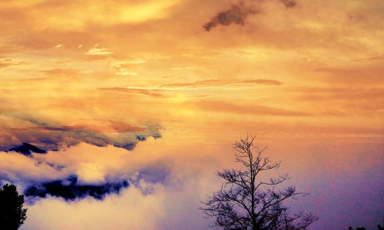 """""""Prayer changes everthing"""" Tree Sunset Beauty In Nature Outdoors Enjoying Nature Beautiful Sky Feel The Moment Cloud - Sky Rainy Days☔ 😊😊😊 Smile Travel Photography Lovedit"""