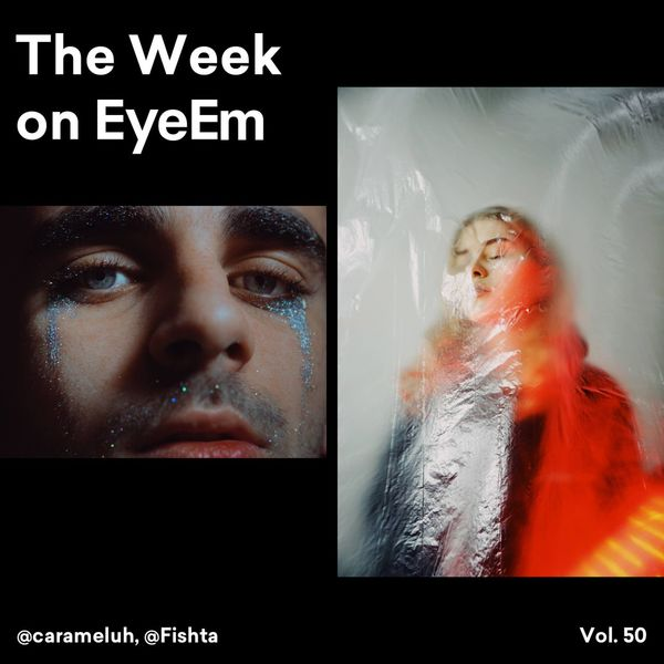 Take a look at the collection of remarkable photographs that our team selected for this The Week on EyeEm ⚡️ From outstanding portrait photography, to stunning landscapes and wildlife, it will be sure to have you feeling inspired to go further with your visuals → https://www.eyeem.com/blog/the-week-on-eyeem-50-2018