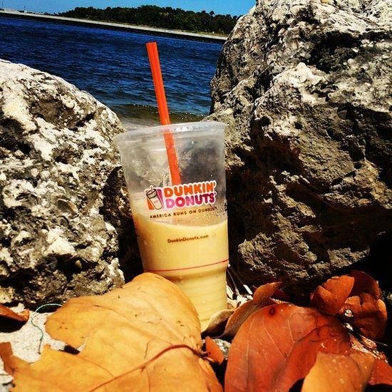 Dunkin' at the beach ☕🌊 Dunkindonuts Icedcoffee Frenchvanilla Florida Boytonbeach Inlet Lovingtheweather Earlyspring Latemarch Thebeach Ocean Sand Rocks Leaves Photography Indie Alternative Urban SpringBreak Vacation Sunday