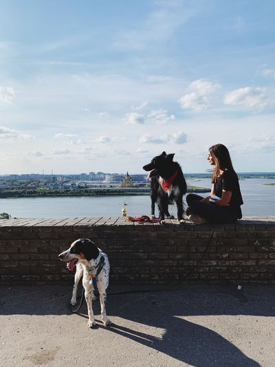 Woman sitting with dogs on retaining wall in city