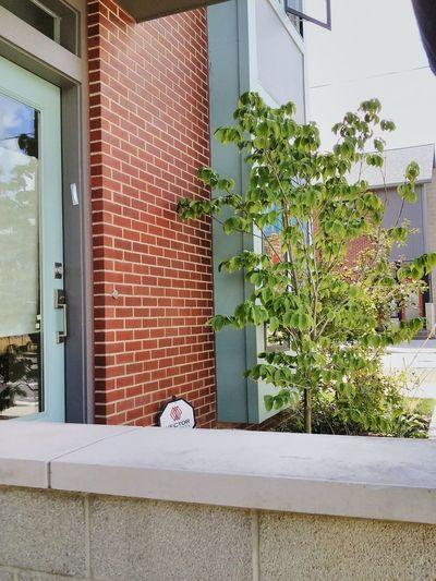 Fresh 3 -7 Condominium Tree Brick Wall Frontporch