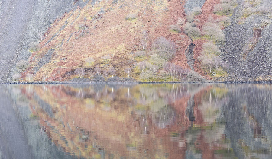 Trees on the Screes at Wast Water Alone Rugged Rock Nature Outdoors Weather No People Still Life Cliff Fell Silver Colored Red Tree Birch Tree Wast Water Reflection Wasdale Lake View Water Screes Fall Spring Autumn Seasons Muted Colors