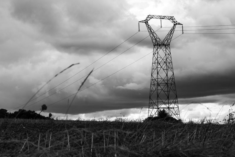 Untitled. Sentinel Series. Sentinel Malephotographerofthemonth Landscape Beauty In The Mundane Atmospheric Mood Moody Sky Pylon Technology Silhouette Bird Sky Cloud - Sky Electricity Tower Electricity Pylon Electricity