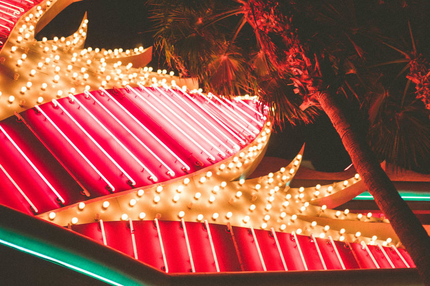 flamingo. Creativity Decoration Fairy Lights Flamingo Glowing Illuminated Las Las Vegas Lighting Equipment Low Angle View Neon Neon Lights Neon Signs Night Red