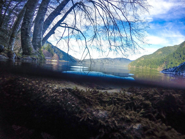Changing one's perspective opens new worlds. The Great Outdoors - 2017 EyeEm Awards No People Beauty In Nature Cloud - Sky Nature Photographic Memory From My Point Of View Reflection_collection GoPro Hero 4 Goprohero4silver EyeEm Best Shots - Landscape Photo Of The Day Nature's Diversities Outdoors Reflection Reflection Photography Underwater Photography Underwater World Nature_ Collection  Nature Textures Lake Crescent Lakeside Mountain Sky And Clouds Skyshots Lost In The Landscape
