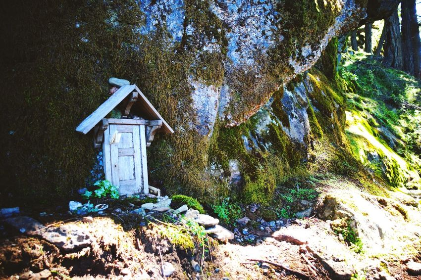 The fairy's house Mount Erskine Salt Spring Island Canada New Lifestyle  Abventure Exploring Hiking Sunny Day Freshness Secret House Forest Nature