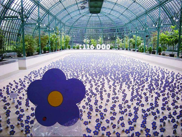Serres De Laeken (Brussels). Laeken Greenhouse Green Flowers