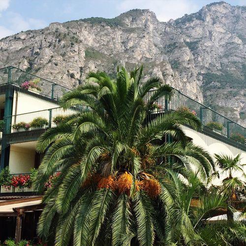 Urlaub in Italien 🌸 First Eyeem Photo