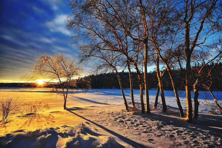 My Winter Favorites is too Walking Around and Watching Sunset All Alone nowa days;but before tht i was with my Girlfriend...... Words Can't Describe This Moment!! .just want to live this Moment.... Preety Cold there.. FeelsGood