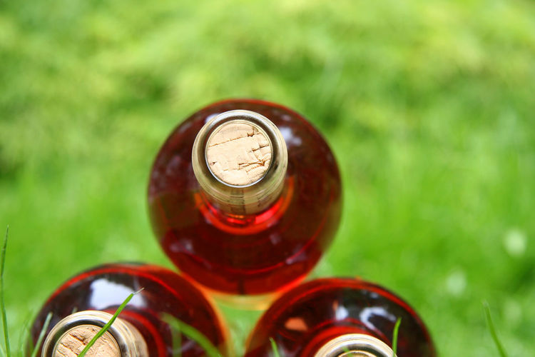 Close-up view of red wine bottles