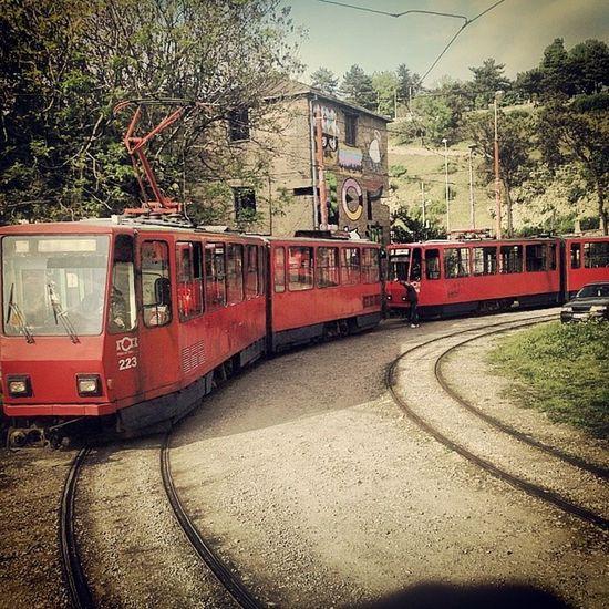 Kalemegdan  Beograd Belgrade Ig_belgrade srbija serbia ig_srbija tram belgradestreet