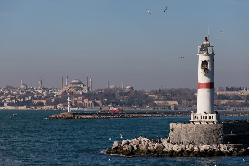 Istanbul Lighthouse Mosque Minaret Built Structure Water Building Exterior Architecture Sky Tower Waterfront Vertebrate Guidance Bird Animal Themes Building Animal Sea Nature No People Transportation Day Outdoors Seagull