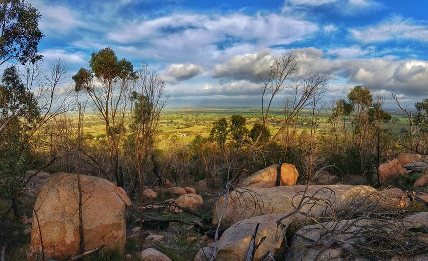 (Series 3 of 5) Ancient Aboriginal Sacred Site Bunjil's Shelter Black Ranges ....Incredible to realise this setting has been evoking the deepest feelings of awe, wonder, respect even worship, since the dawn of time. Among one of its many wonders (for me) is that the site is so infrequently visited. It is the only known place in all of Australia that has a cave depiction of the creator being Bunjil. The legend of Bunjil is fascinating, I will attempt to share something of its origins and import in future posts in this series. For My Friends That Connect Exceptional Photographs Australian Landscape The Great Outdoors - 2016 EyeEm Awards EyeEm Best Shots My Cloud Obsession☁️ Android Photography Eye4photography  EyeEm Gallery Australia❤️ EyeEm Best Shots - Nature EyeEm Nature Lover Artistic Expression EyeEm Best Edits Artistic Interpretation Mobilephotography Tadaa Community The Nature Photographer - 2016 Eyeem Awards