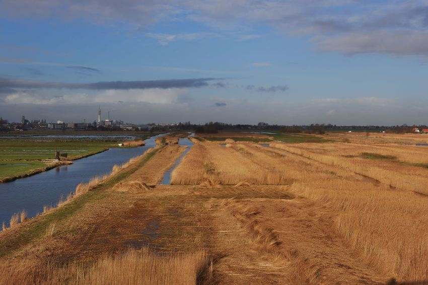Re Posted Edited Dutch Landscape Water_collection Wetlands from Earlier This Week