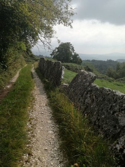 The Way Forward Outdoors Landscape Path In Nature Stone Fence Diminishing Perspective Gloomy Day Nature_collection Following The Path... Green Countryside Treelined Pathway Tranquil Scene Empty Road