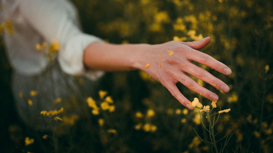 Midsection of woman hand on flowering plant during rainy season