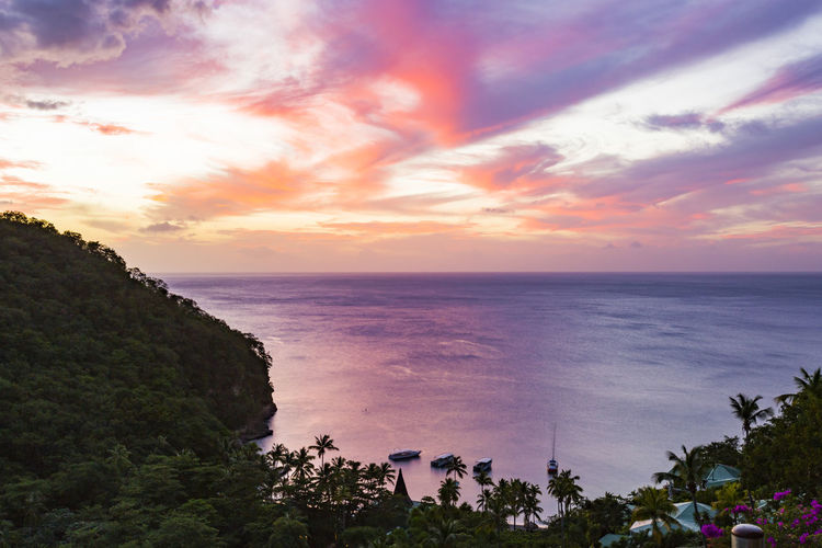 Anse Chastanet from Jade Mountain Resort, Saint Lucia Beach Beauty In Nature Cliff Day Horizon Over Water Nature No People Outdoors Scenics Sea Sky Sunset Tranquil Scene Tranquility Tree Water