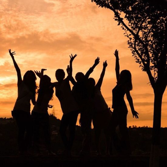 Everyday Joy Sunset Silhouettes Silhouette_collection Sun_collection Sunset_collection Tree Karadeniz Rize Sonya7r Eyem Best Shots Nature_collection