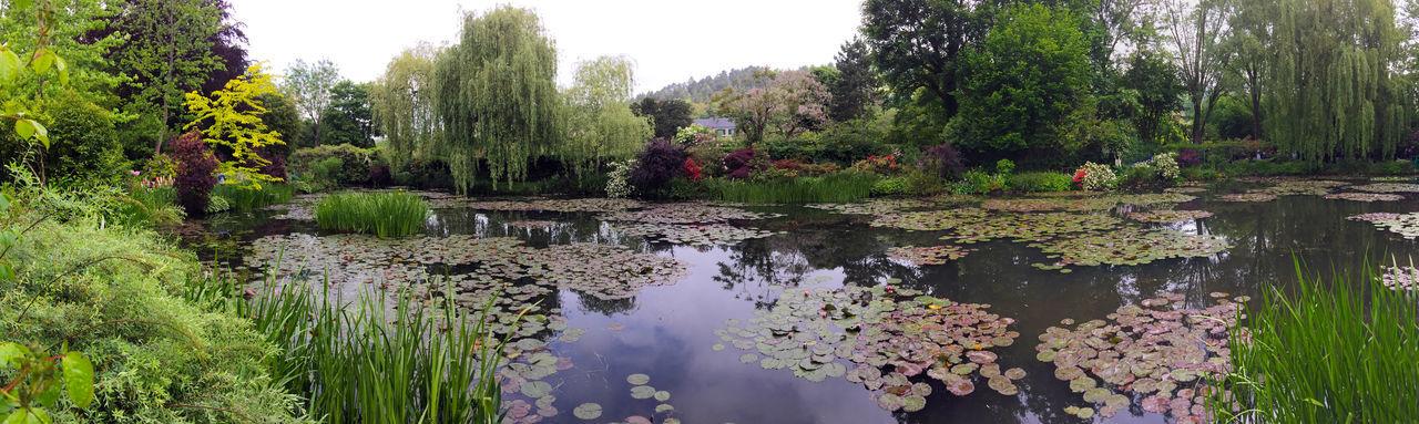 Flowers Give Impression Impressionisme Jardins Maison Monet Nymphéas