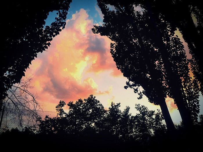 With the tune of his guitar... Skyporn Clouds And Sky Sunset Madrid SPAIN Summer2015 Nature IPhoneography Beautiful