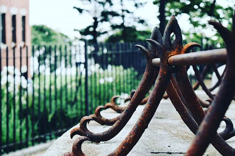 Boston Closeup Fence Metal Rust Igboston Travelig  Travels Travel VSCO Vscophile Vscocam Nikon D3300