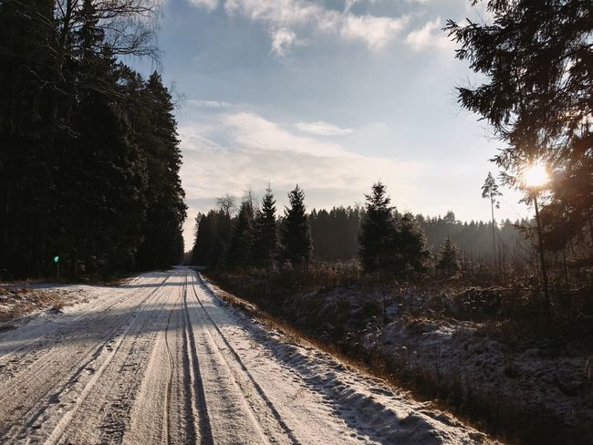 Road Landscape Snowy Forest Snow Winter Wonderland Forest Photography Forestwalk Sunray Scenery Hollidays Explore Travel Road Sun Forest Winter Sky Nature Day Outdoors Beauty In Nature Landscape Scenics