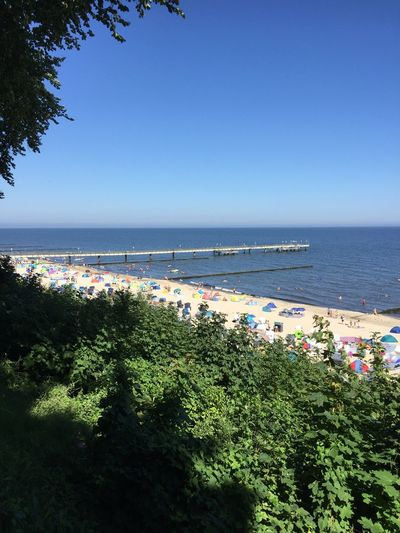 Seebrücke Koserow Sun Beach Seabridge Port Usedom, Germany Koserow Sea Water Plant Sky Beach Land Beauty In Nature Nature Tranquility Sunlight Tranquil Scene Clear Sky Scenics - Nature Horizon No People Day Horizon Over Water Growth Blue Outdoors