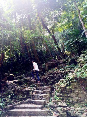 Ruina arriba ( Tabasco16 ) Mayan Ruins
