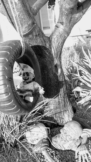 Creepy Tree Tire Swing Halloween Clown Doll Zombie Creepy Scary Black And White Scene Close-up Tree Branch Bare Tree
